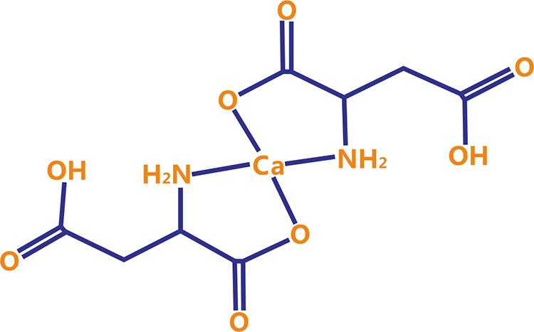钙立速天门冬氨酸钙分子结构
